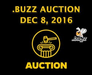 .buzz auction TLD